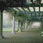 tapestry, wall, art, hanging, usa, wisteria, pergola, arch,